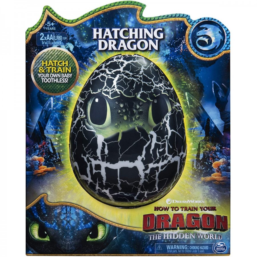 Dragons Hatching Toothless