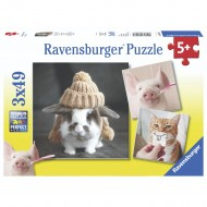 Puzzles (ages 3-5) 12-60 Pieces | Buy Online | Casey's Toys