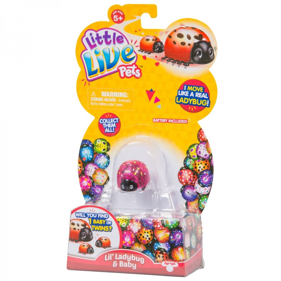 Little Live Pets Lil Ladybug S1 Single Pack Assorted